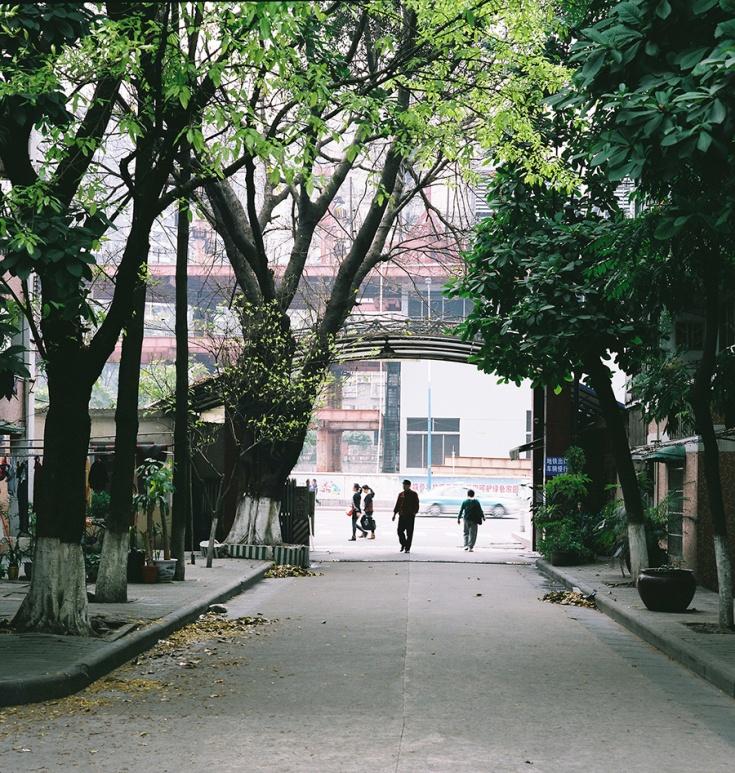 Danwei Entrance