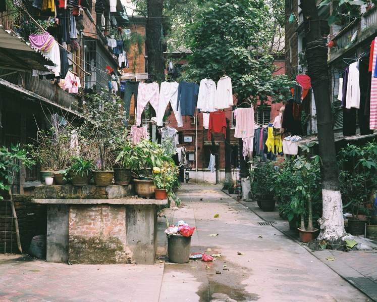 Danwei Street with plants and washing